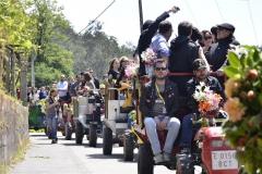 Desfile de chimpíns
